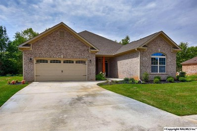 128 Summer Walk Lane, Harvest, AL 35749 - #: 1084066