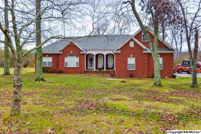 3261 Columbus City Road, Grant, AL 35747 - #: 1084230