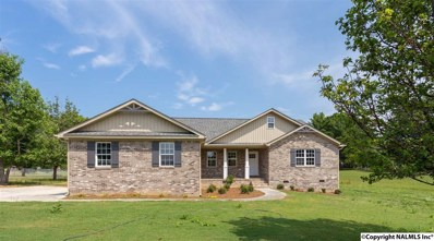 4350 Richland Way, Southside, AL 35907 - #: 1085242