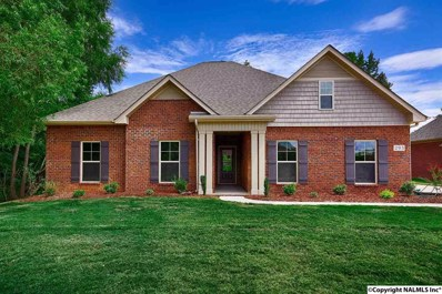 293 Blue Creek Drive, Harvest, AL 35749 - #: 1086563