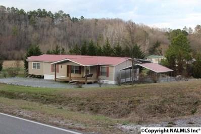 1030 County Road 99, Gaylesville, AL 35973 - #: 1087590