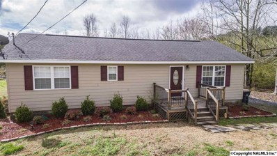 1000 County Road 52, Fort Payne, AL 35967 - #: 1088014