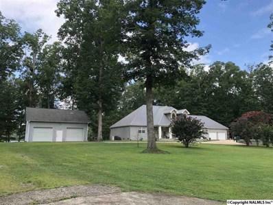 1160 County Road 567, Gaylesville, AL 35973 - #: 1089624
