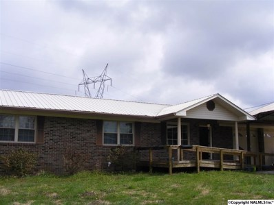 129 County Road 291, Bryant, AL 35958 - #: 1089818