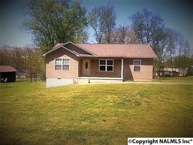 492 Mitchell Drive, Rainsville, AL 35986 - #: 1090281