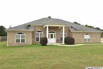 108 Turney Lane, Toney, AL 35773 - #: 1090425