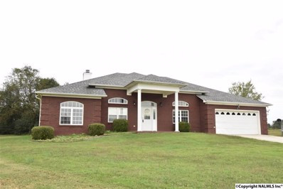 121 Turney Lane, Toney, AL 35773 - #: 1090426