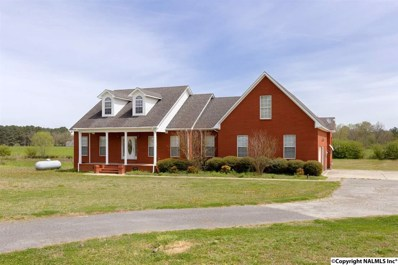 675 Brown Road, Danville, AL 35619 - #: 1091016