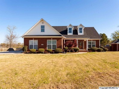 205 Duck Creek Drive, New Market, AL 35761 - #: 1091342