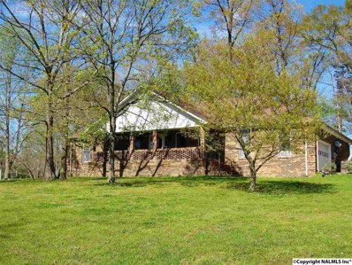 3240 Welcome Home Church Road, Horton, AL 35980 - #: 1091667