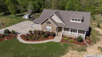 245 Hogan Lane, Ashville, AL 35953 - #: 1091751