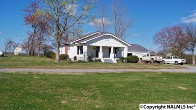 1744 Bright Star Road, Horton, AL 35980 - #: 1092039