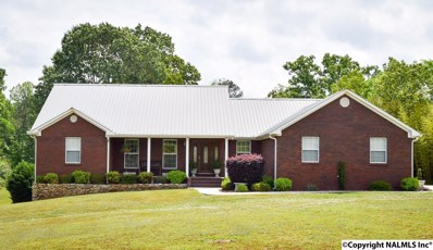 2813 Lawrence Cove Road, Eva, AL 35621 - #: 1092098