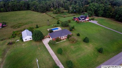 24 Henry Bayless Road, Ardmore, TN 38449 - #: 1092189