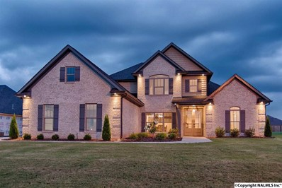 113 Stony Crossing Road, Meridianville, AL 35759 - #: 1092312