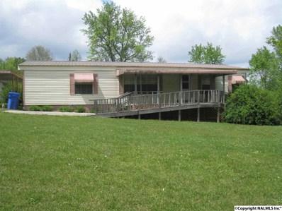 1384 McCurdy Avenue, Rainsville, AL 35986 - #: 1092364