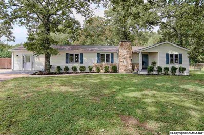 164 Jones Road, Hazel Green, AL 35750 - #: 1092408