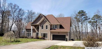 124 Bluff View Drive, Scottsboro, AL 35769 - #: 1092496