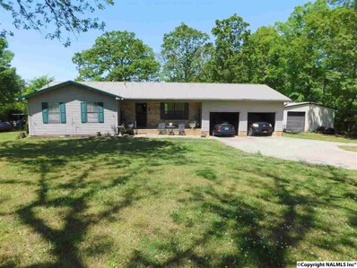 205 County Road 608, Cedar Bluff, AL 35959 - #: 1092682