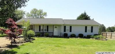340 Brothers Road, Albertville, AL 35951 - #: 1092700