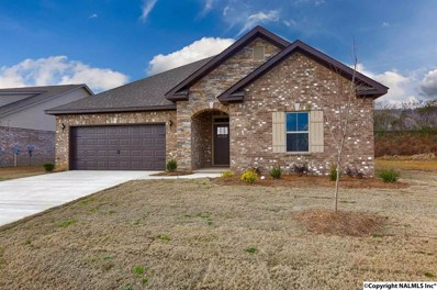 4322 Adventura Drive, Owens Cross Roads, AL 35763 - #: 1093123