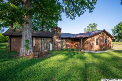 256 Ruby Johnson Drive, Scottsboro, AL 35769 - #: 1093518