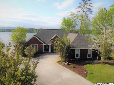 536 Till Davis Road, Langston, AL 35755 - #: 1093623