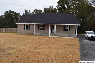 142 County Road 1033, Fort Payne, AL 35968 - #: 1093631