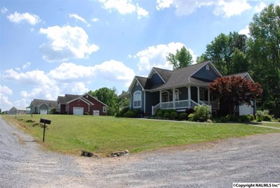 864 Mountain View Drive, Fort Payne, AL 35968 - #: 1093644