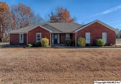 89 Beaver Creek Road, Laceys Spring, AL 35754 - #: 1093664