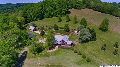 715 Center Point Road, Pulaski, TN 38478 - #: 1093749