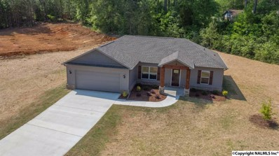229 T R Christian Road, New Hope, AL 35760 - #: 1093777