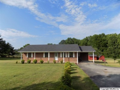 5404 Highway 55 East, Eva, AL 35621 - #: 1094168