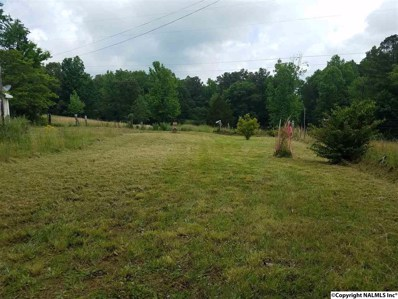 302 Willow Lane, Union Grove, AL 35175 - #: 1094186