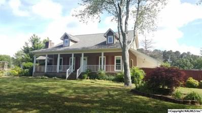 116 Eagle Drive, Albertville, AL 35951 - #: 1094419
