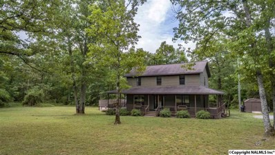 3303 Bird Dog Trail, Fort Payne, AL 35967 - #: 1094536
