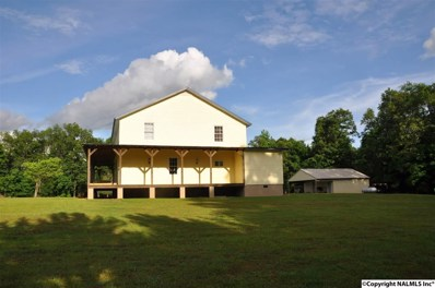 18360 County Road 26, Oneonta, AL 35121 - #: 1094656