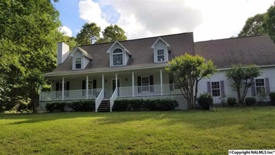 111 Old Baker Gap, Boaz, AL 35956 - #: 1094725