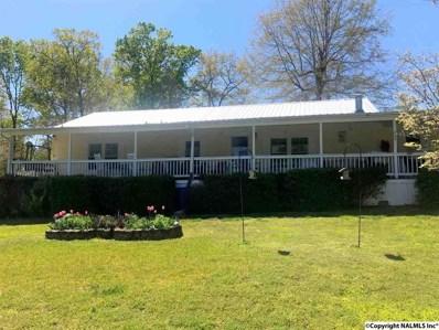 4166 County Road 44, Leesburg, AL 35983 - #: 1094865