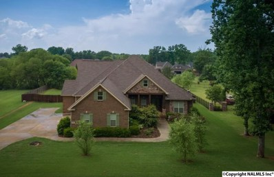 256 Wedgewood Terrace Road, Madison, AL 35757 - #: 1094949