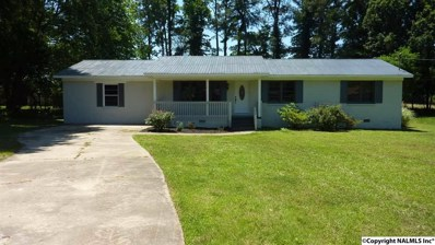 306 10TH Avenue, Arab, AL 35016 - #: 1095274