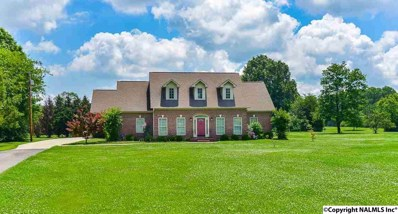 2629 Chapel Hill Road, Decatur, AL 35603 - #: 1095352