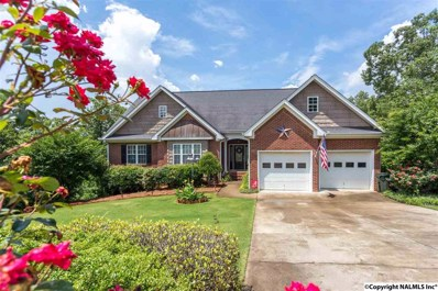 209 Shadow Wood Road, Glencoe, AL 35905 - #: 1095671