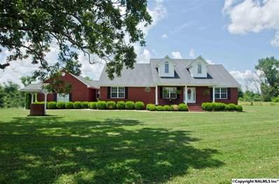 1365 County Road 116, Town Creek, AL 35672 - #: 1096203