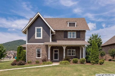 19 Astoria Lane, Gurley, AL 35748 - #: 1096238