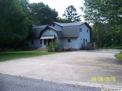 358 County Road 250, Scottsboro, AL 35768 - #: 1096340