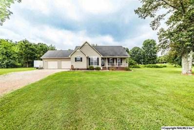 51 Hunters Ridge Drive, Fayetteville, TN 37334 - #: 1096377