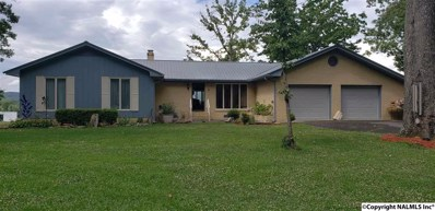 3900 Chattooga Drive E, Cedar Bluff, AL 35959 - #: 1096430
