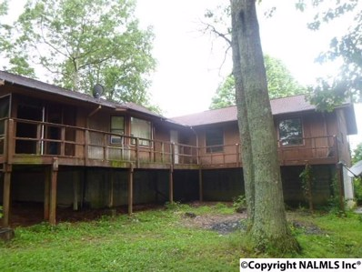 1217 Keel Mountain Road, Gurley, AL 35748 - #: 1096557