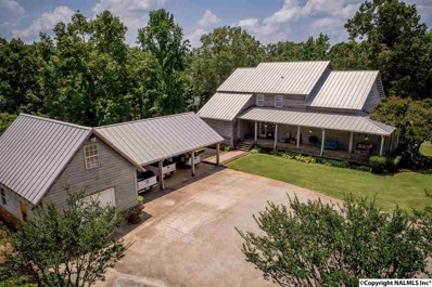 242 Greasey Cove Road, Eva, AL 35621 - #: 1096602